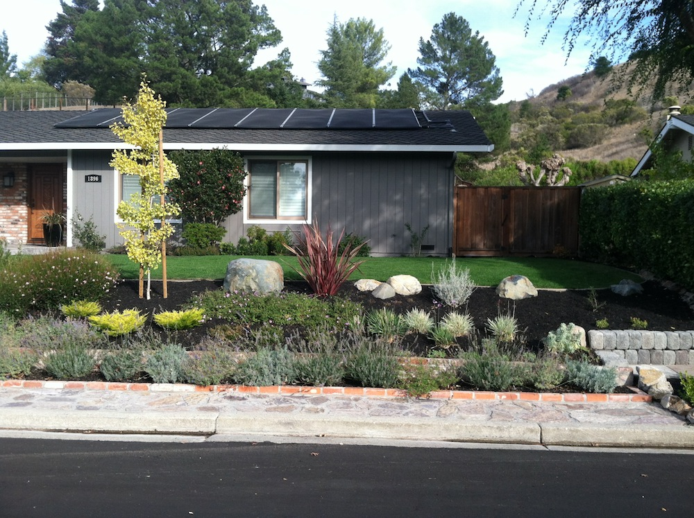 Lawn Reduction w/Xeriscape