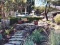 Close-up View of Path with Drought-tolerant Landscape