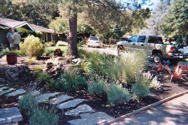 Path with Drought-tolerant Landscape